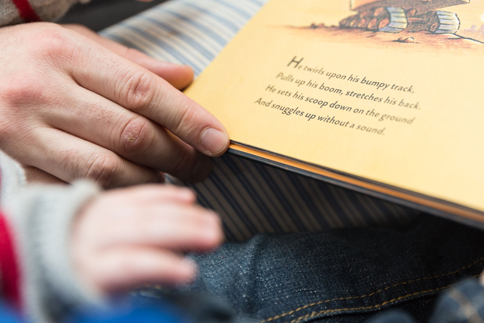 dad reading to boys, bergen county family photographer