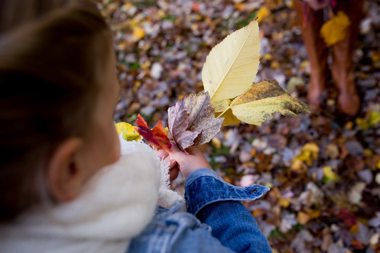 little girl inspecting her leaf