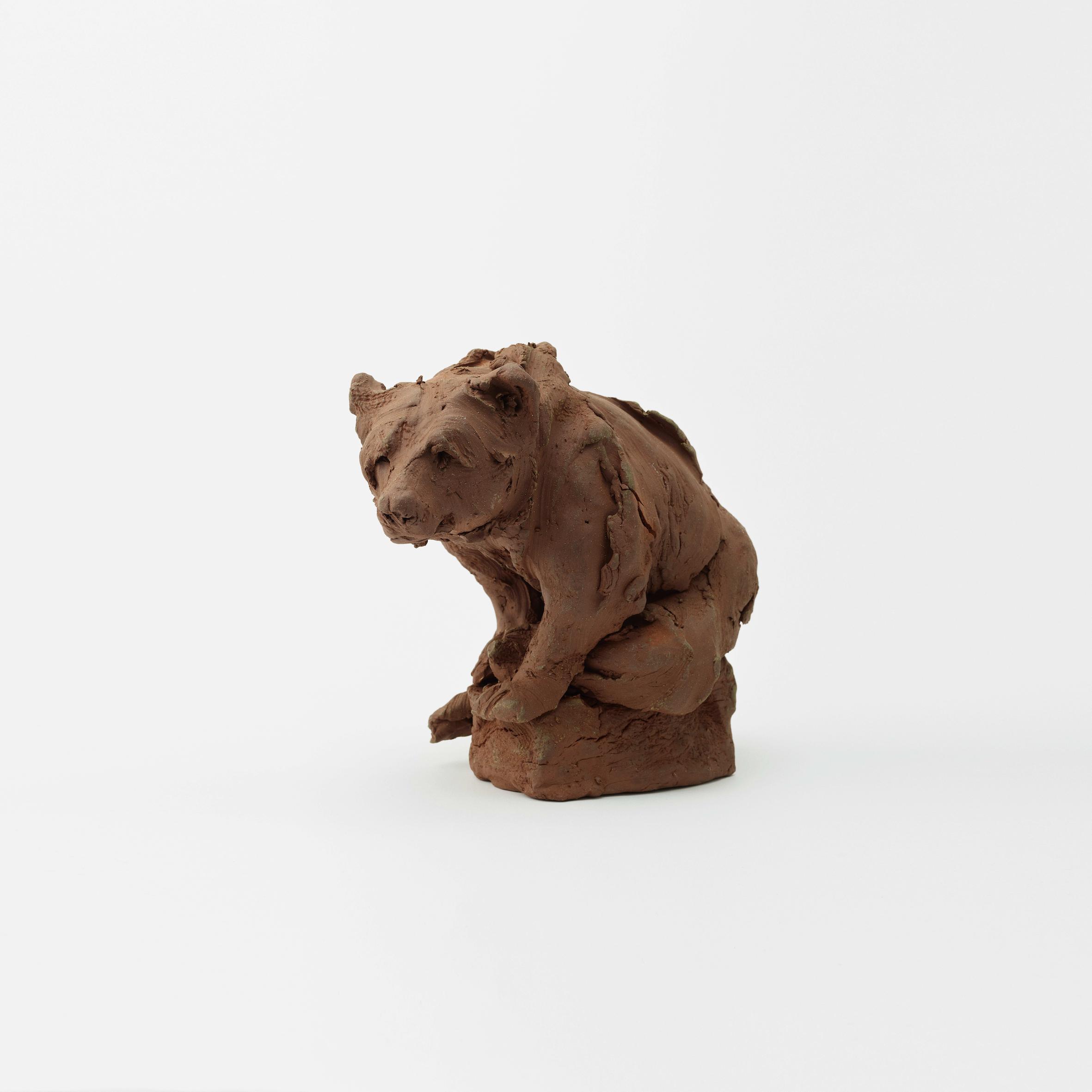 Larger Bear Study , 2019 Photography: Masaki Ogawa