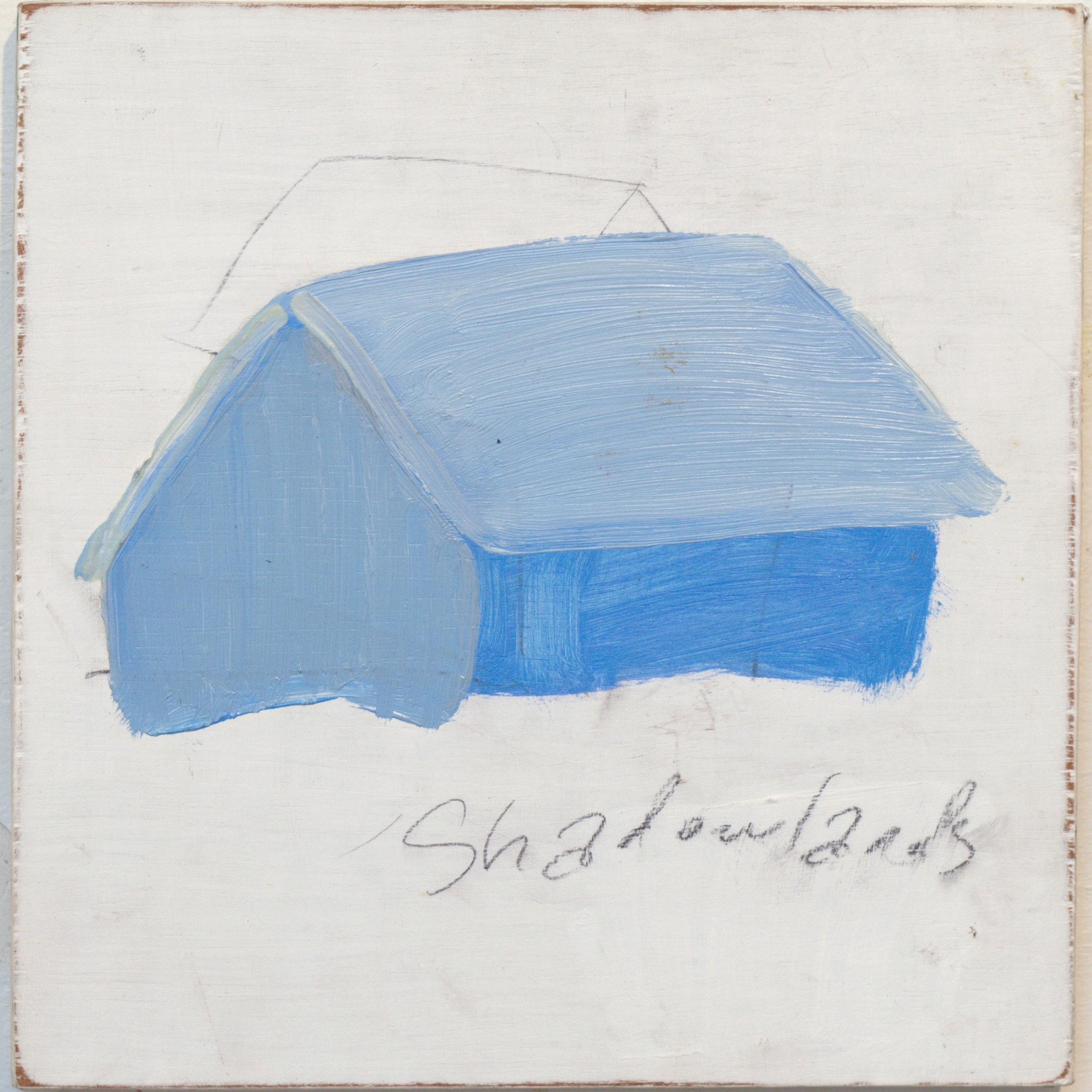 Stephen-Nolan-Shadowlands-small-SQ.jpg