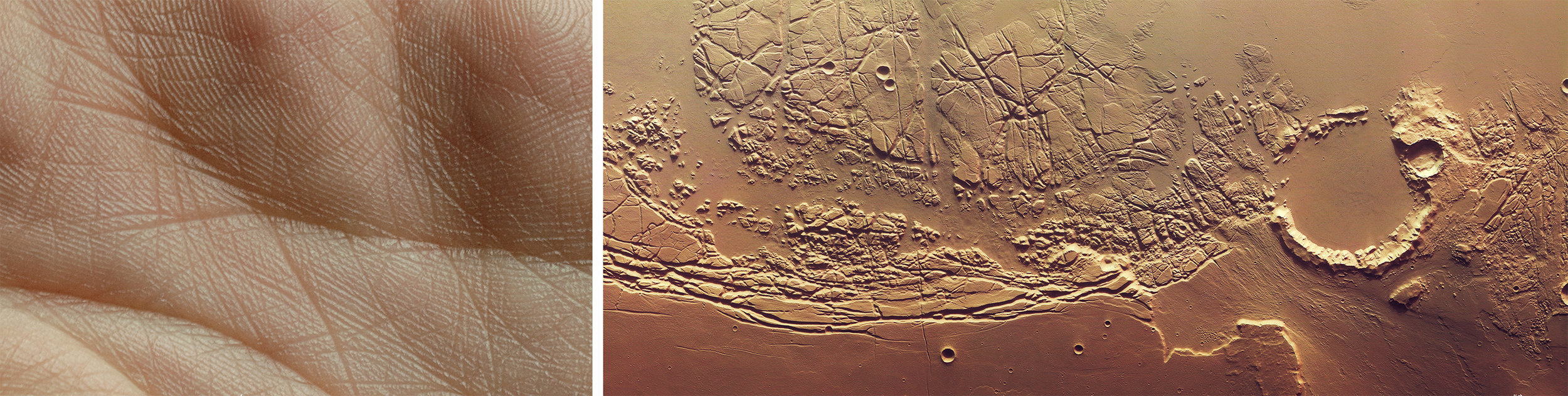 Marina-Fridman-Mars
