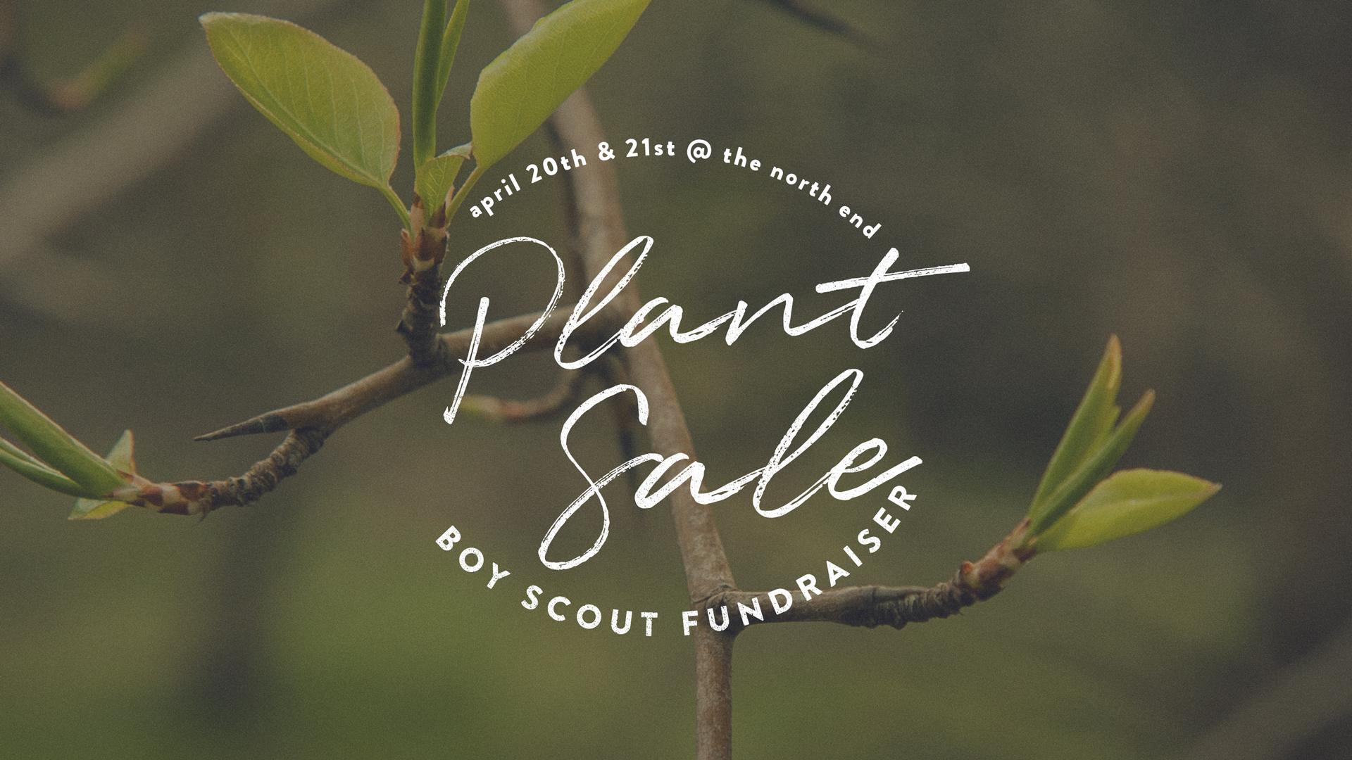 Plant-Sale.jpg