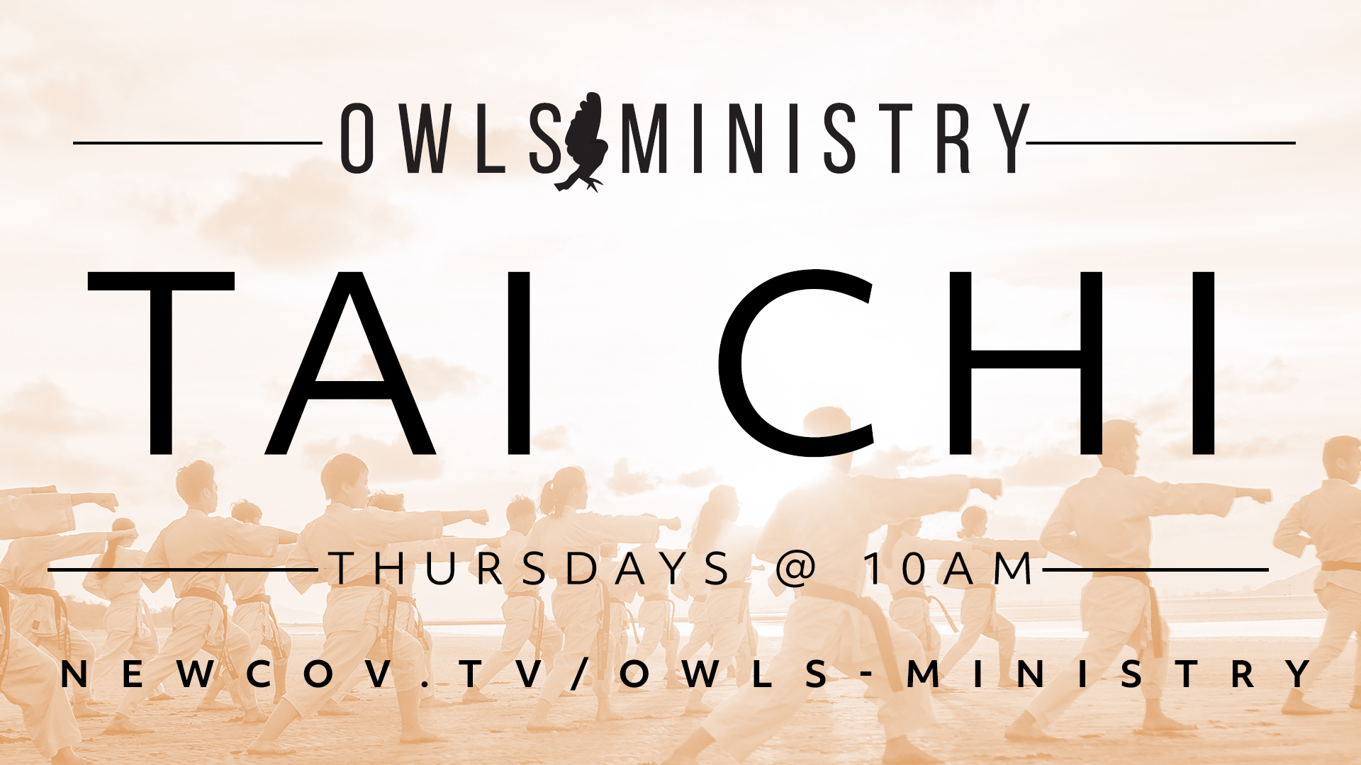 OWLS-Tai-Chi.jpg