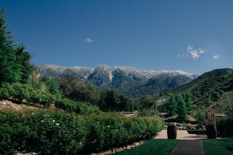 MELISSA-PHELAN-WEDDING-PHOTOGRAPHER-4440.jpg