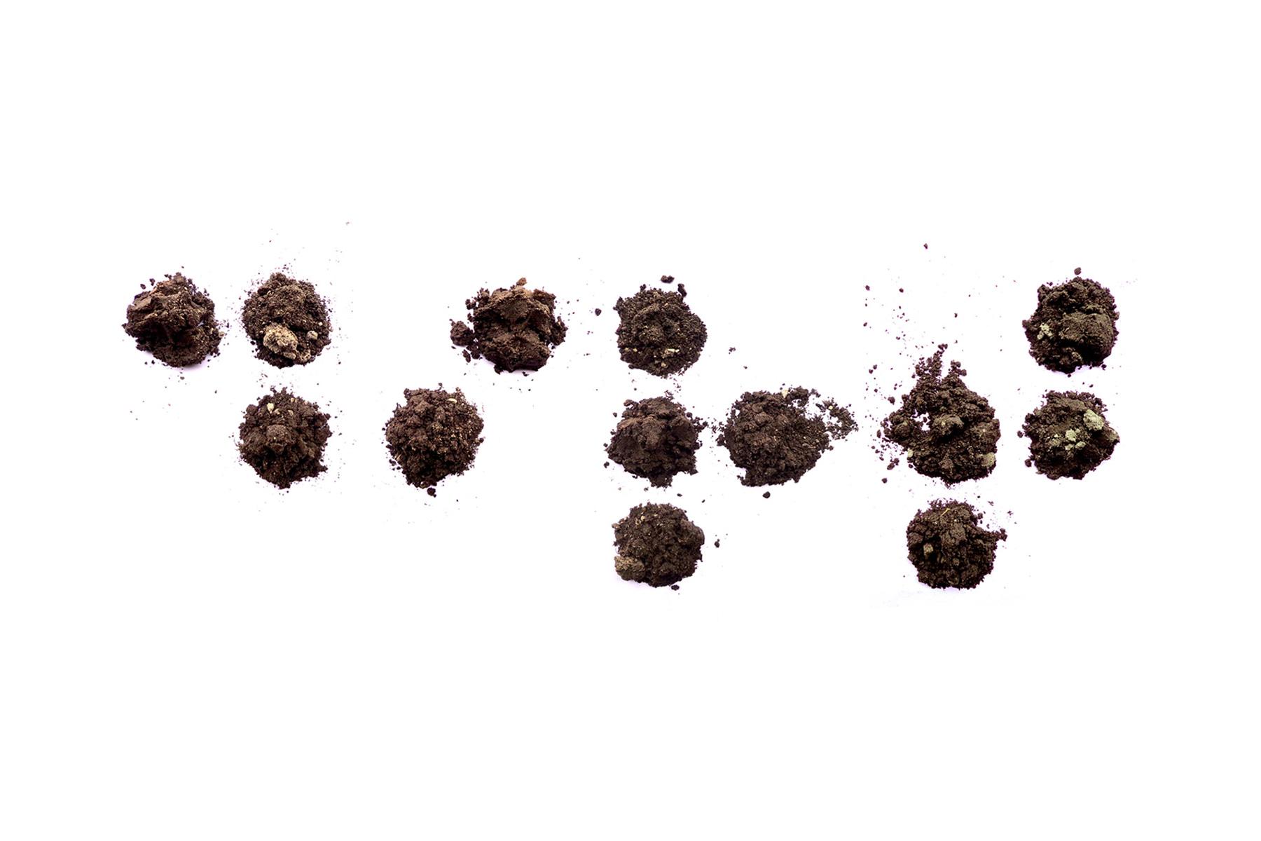 Dirt-Braille_illustration.jpg