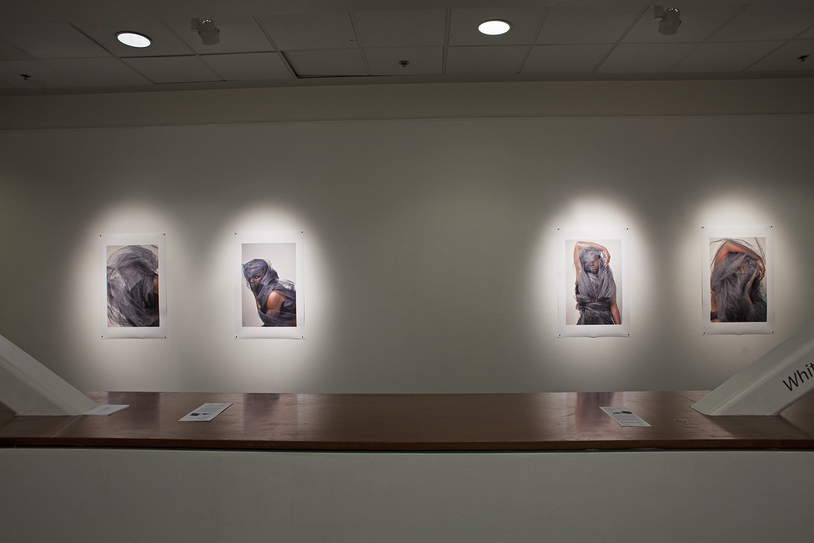 Littman & White Gallery (2017)