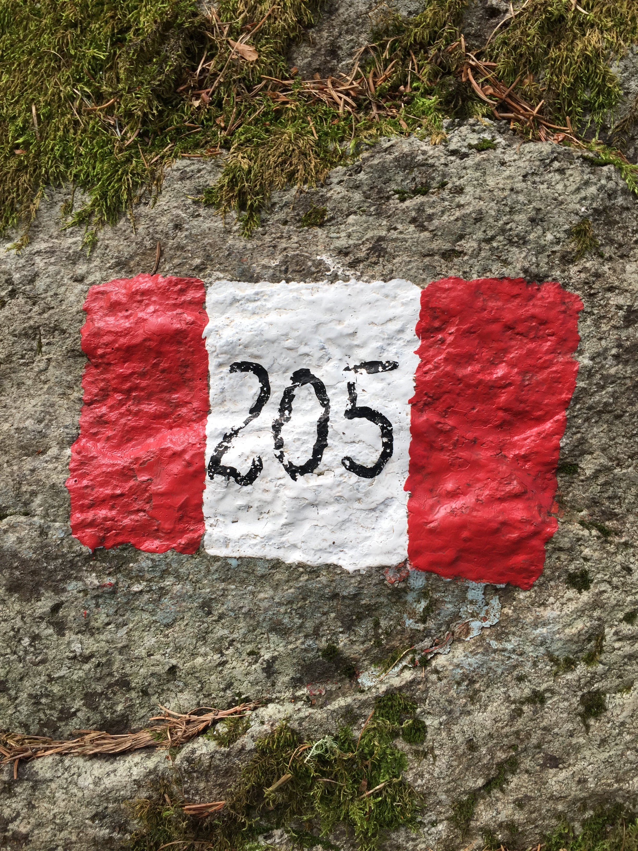 One version of the well marked No. 205 trail from Vermiglio, Italy
