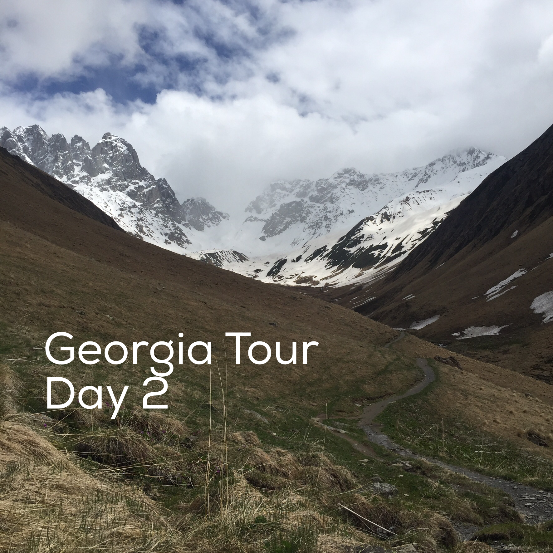 Georgia Tour with Living Roots