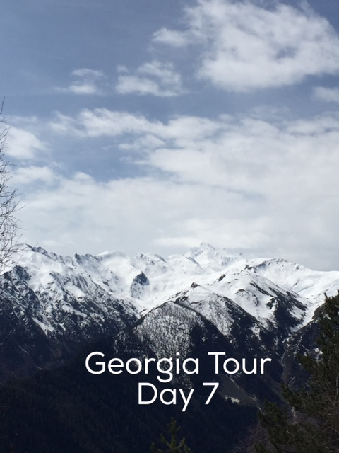 Day 7 Georgia Tour with Living Roots