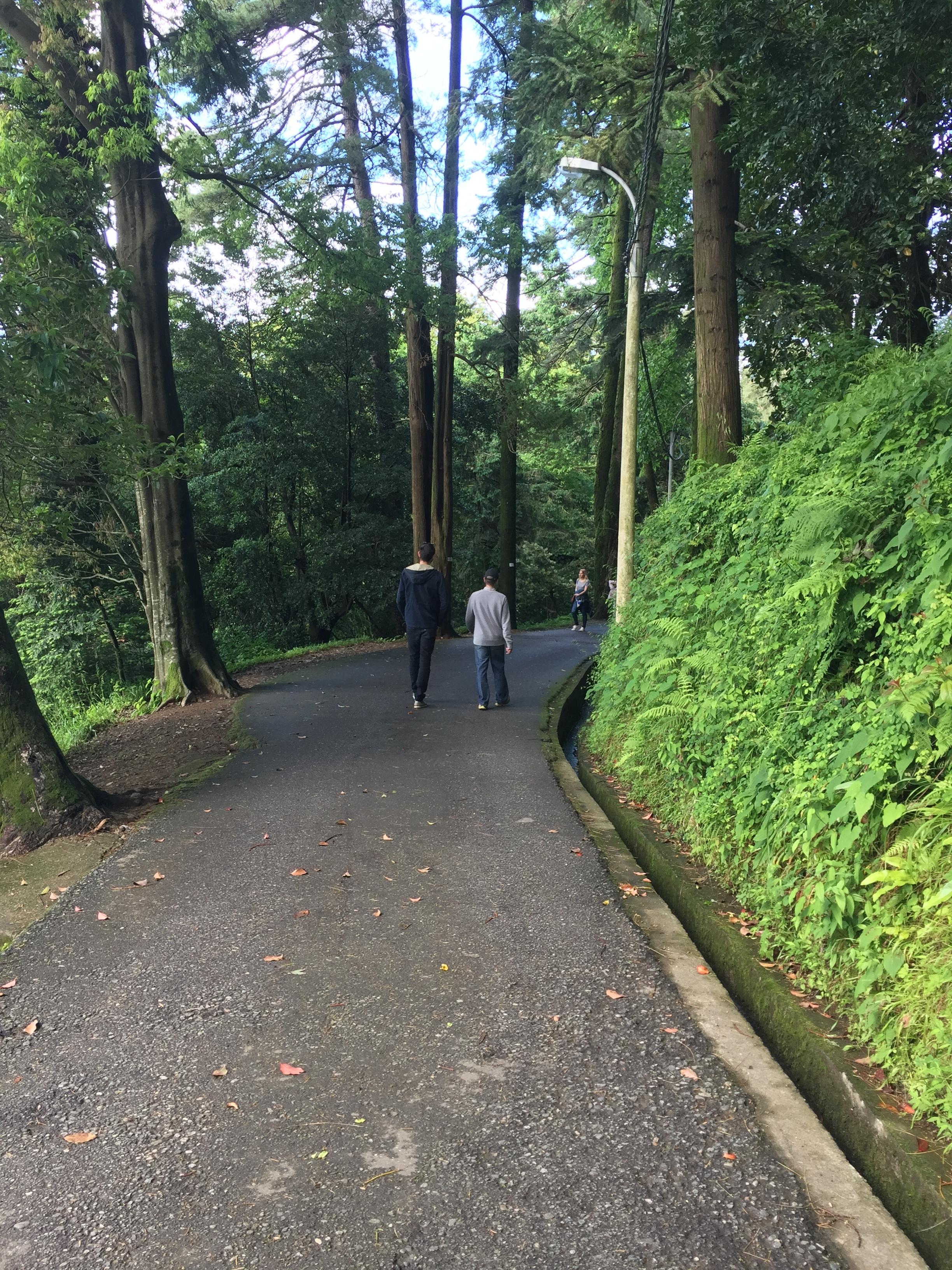 Zac and Shota on the Botanical path