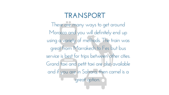 MoroccoTransport - Graphic.png