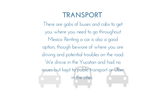 TransportMexico - Graphic.png