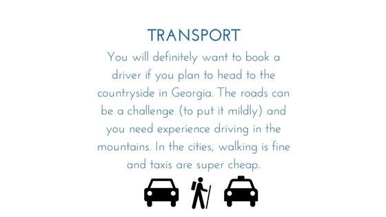 Georgia Transport - Graphic.png