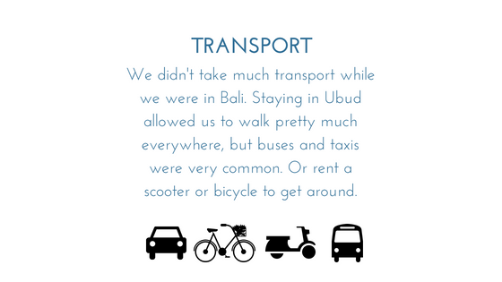 Indonesia Transport.png
