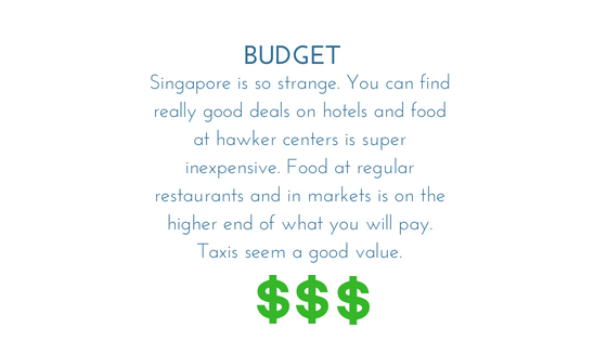 Singapore BUDGET - graphic.png