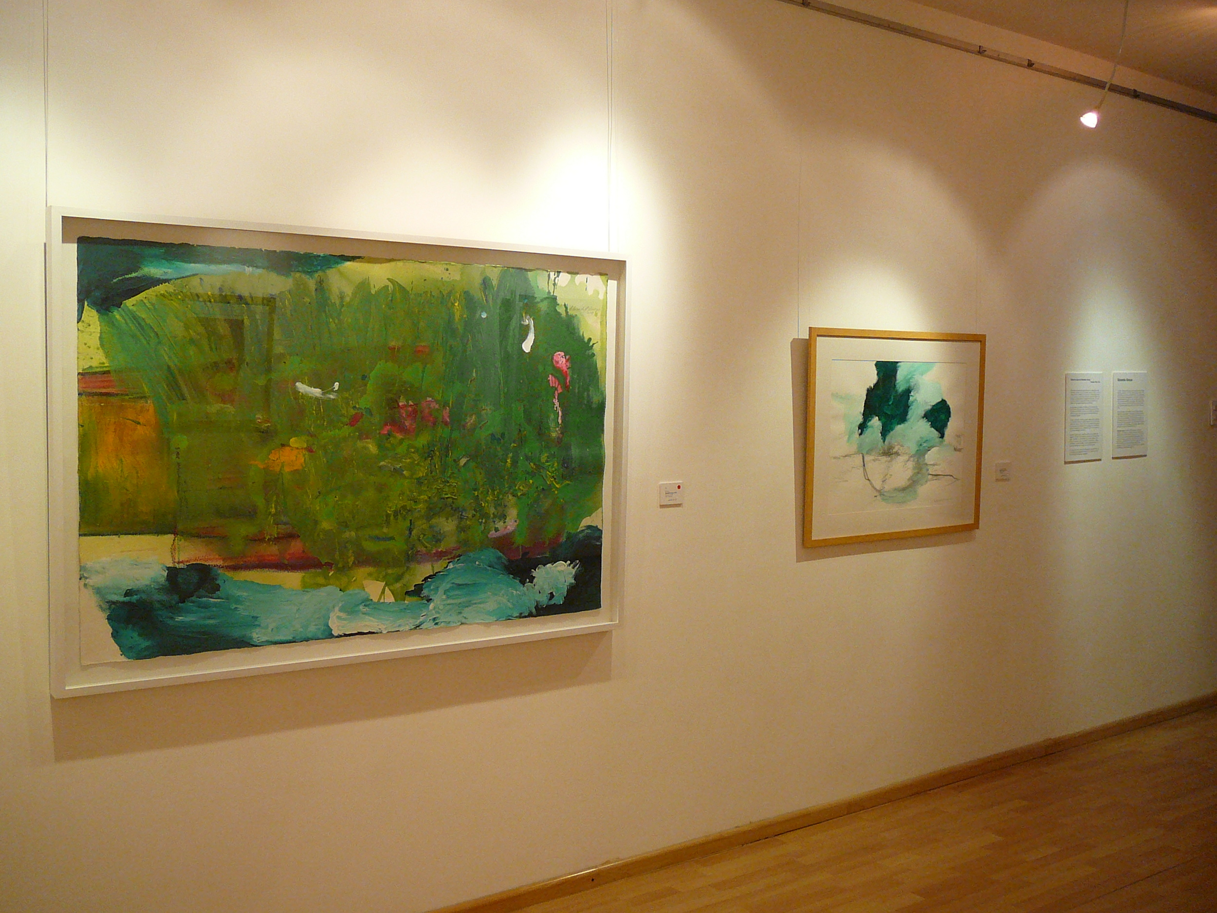 Exposición Eduardo Arroyo abril 2013 (33).JPG