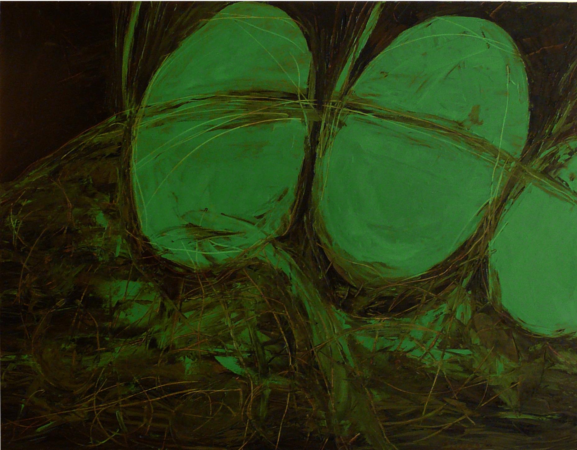 Rafael Ruales serie verde 002.JPG