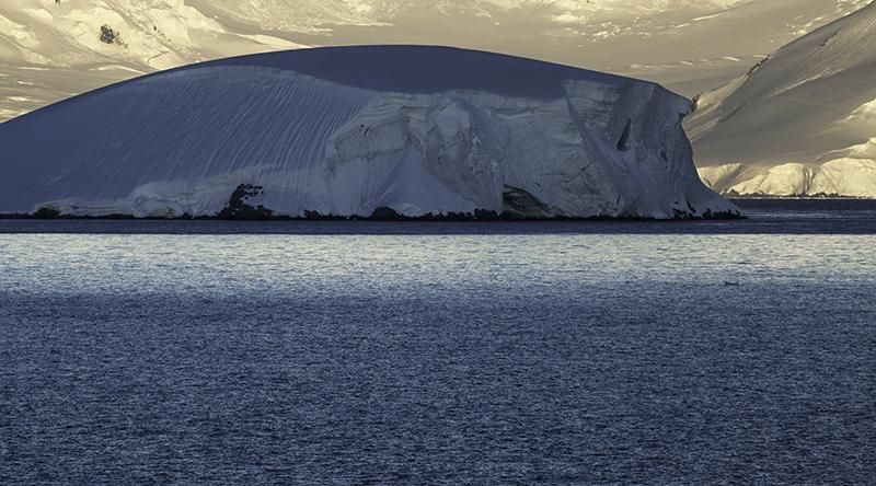 12 MG Antartida.jpg