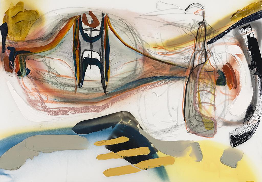 Cochon  2019 acrylique, aérosol et graphite sur Mylar, 24'' x 36''