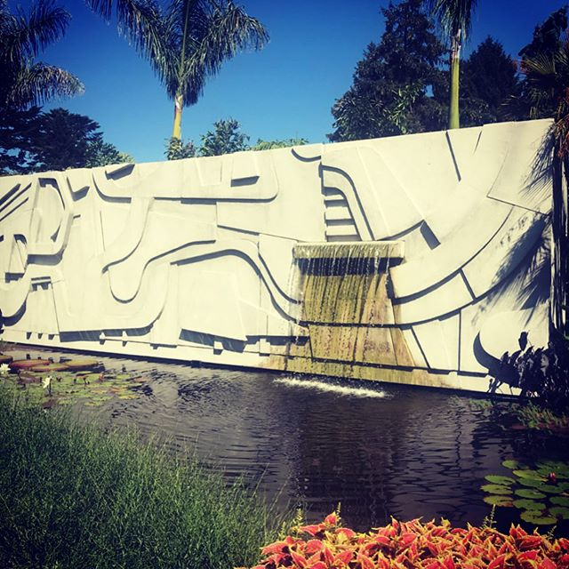 The incredible lush beauty of BRAZILIAN MODERN:  THE LIVING ART OF  ROBERTO BURLE MARX exhibition at the New York Botanical Gardens @nybg  A prolifically talented landscape architect, botanist, environmentalist, conservationist, sculptor and painter! Show closes Sept 29th! Worth the trip! 🌴💚🌴 .  #newyorkbotanicalgarden #robertoburlemarx #burlemarx #landscape #garden #sculpture #landscapearchitecture #tropicalplants #waterlily #conservation #environmentalist