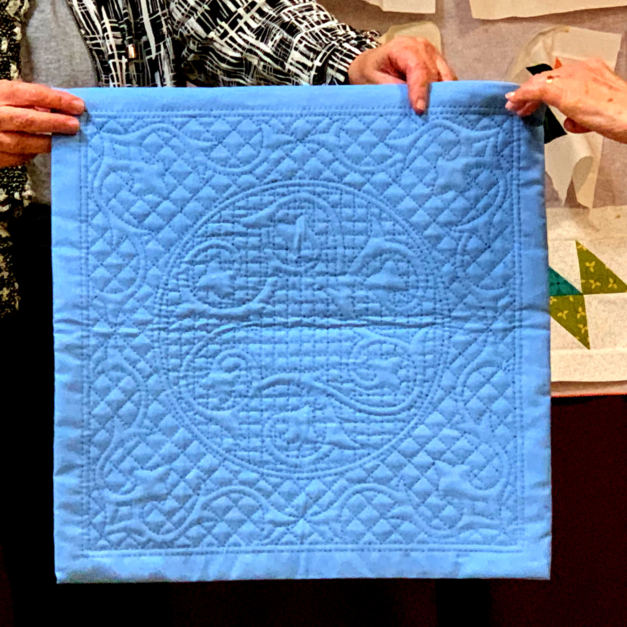 Whole cloth quilt, by Maryann Cannavale