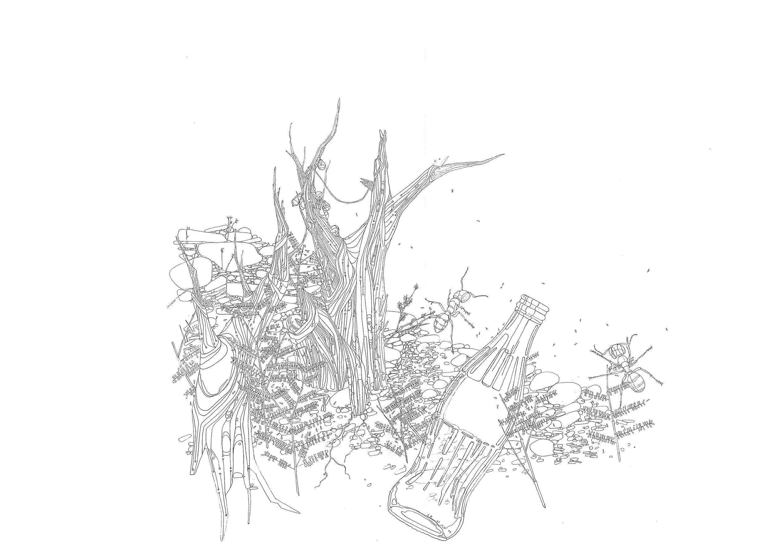 Copy of MAXWELL MUTANDA