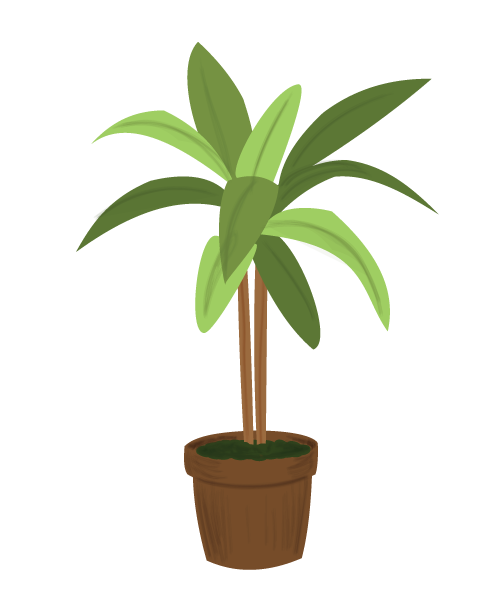 House-plant.png