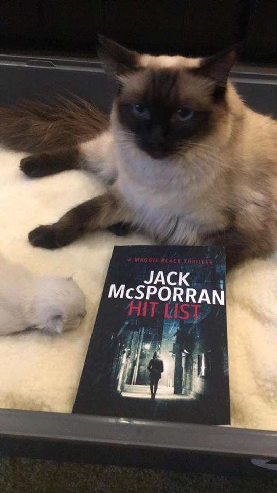 Topaz the Ragdoll with her little newborn and a copy of Hit List! :)