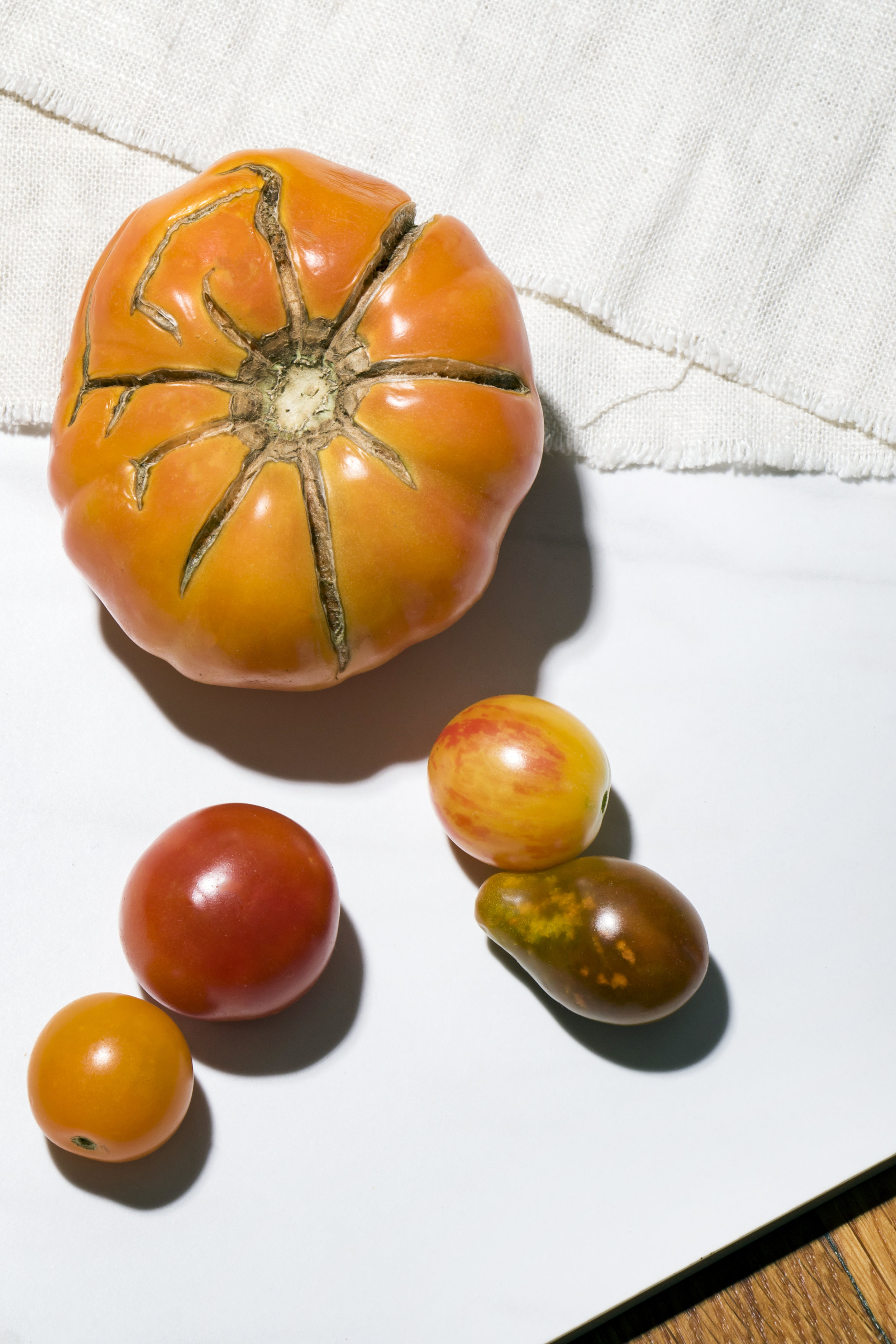 Cincinnati Photographer | Tomato Pie | Allison McAdams 4.jpg