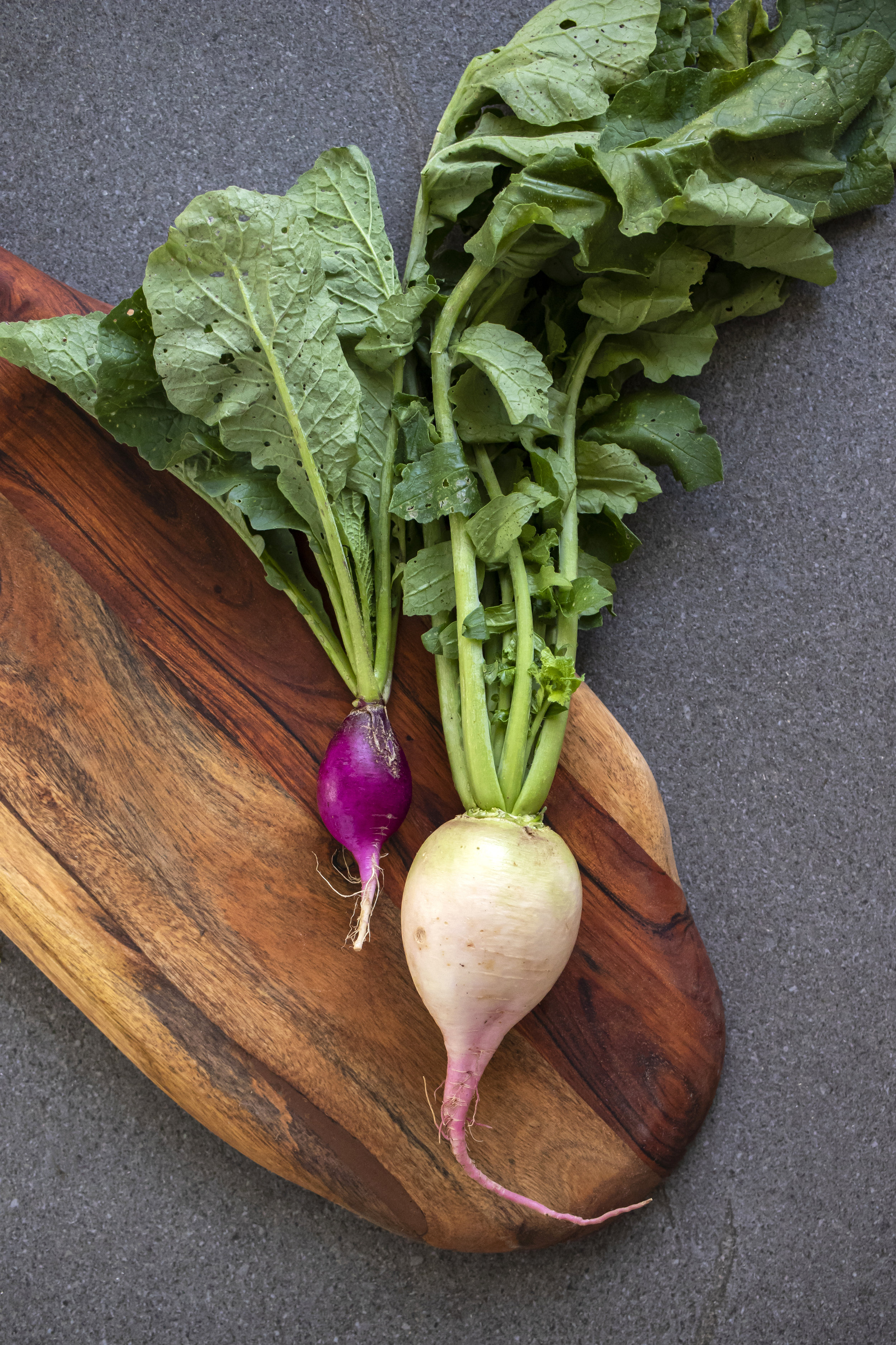Gorman Farm Radishes | Cincinnati Food Photographer | Food Photographer | Allison McAdams.JPG