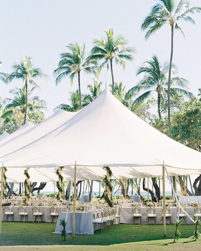 Wedding Day | Palm trees and ocean views are the perfect compliment to an airy white sailcloth tent. While tents are not alway necessary in Hawaii, they are a wonderful way to not have to worry about the weather outdoors on your big day.  And not only do they provide shade and shelter, but they are an ideal way to define a space. As featured in @martha_weddings | Tent + Rentals @accelrentals | Flowers @mandygracedesigns | Linens @theweddinglinenco | Lighting @blazeentertainment | Photo @omalleyphotographers |