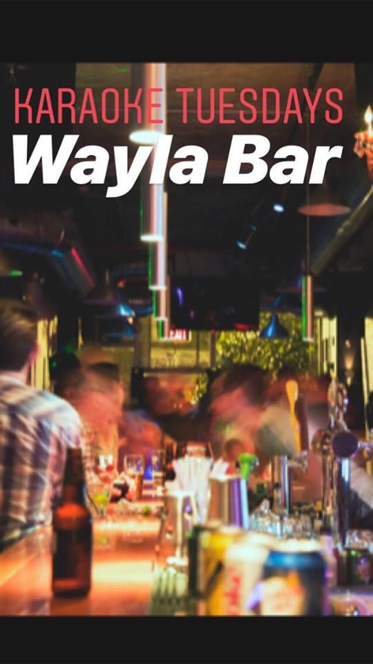 Wayla Karaoke.jpg