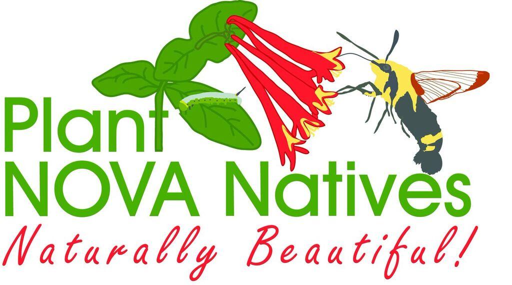 PNN_Logo.jpg