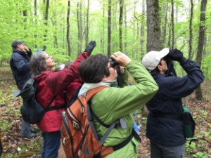 Birding By Ear Boot Camp - Laura McDonald