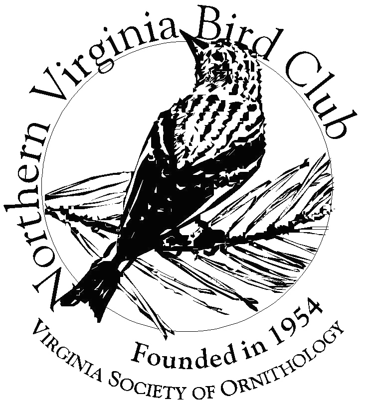 Northern Virginia Bird Club_253KB.jpg