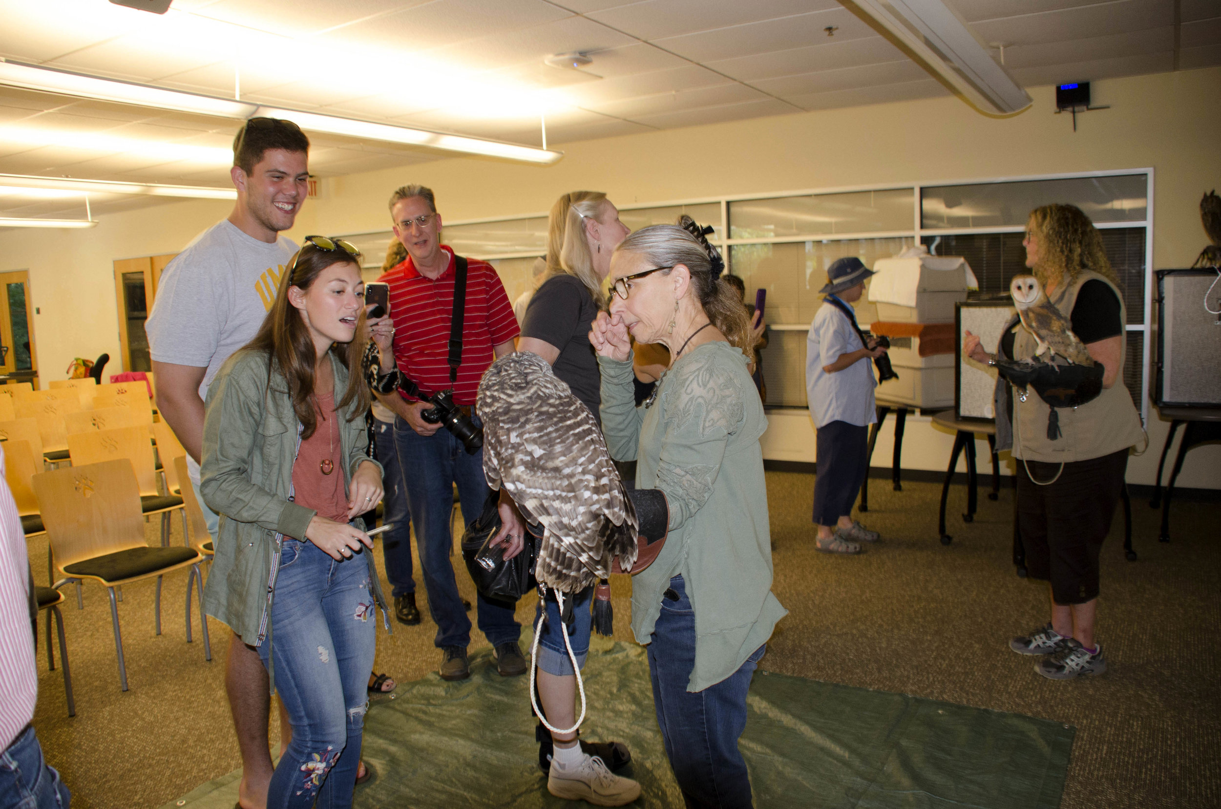 Owls on View.jpg