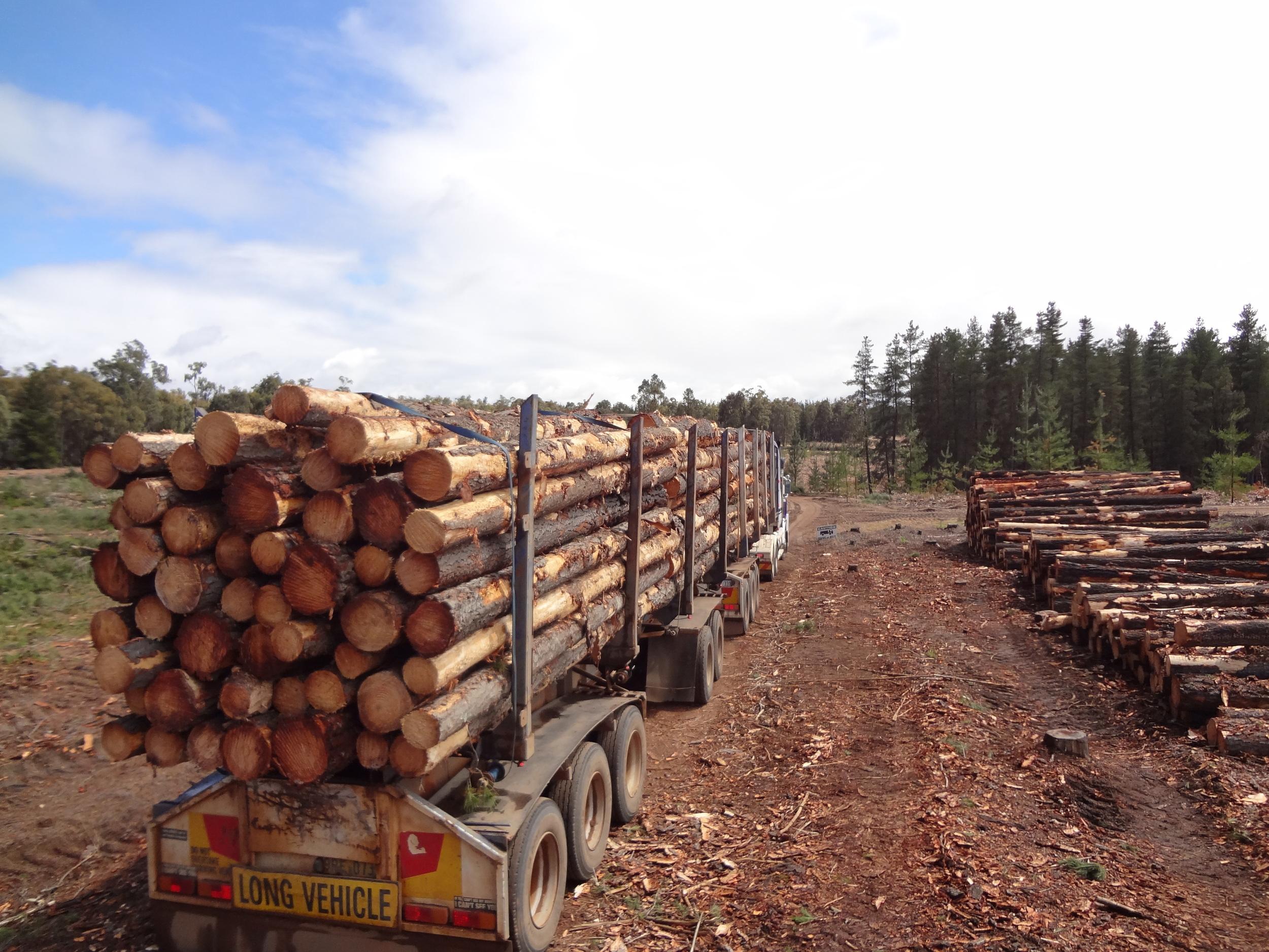 overloaded trucks 071.JPG