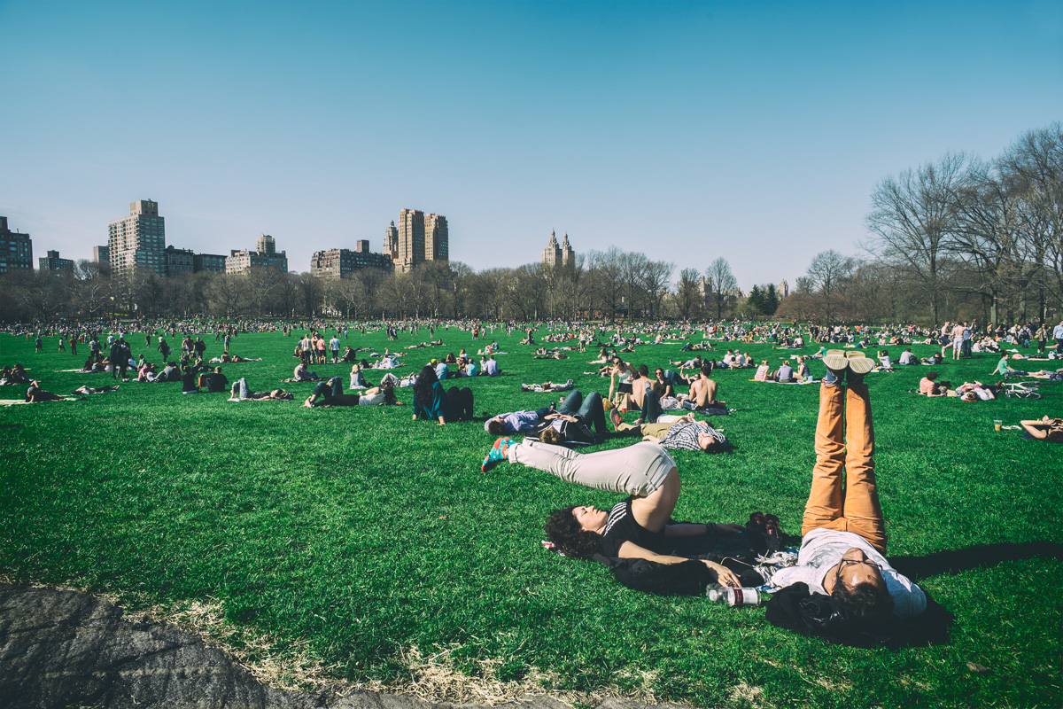 Stretching in Central Park   2014