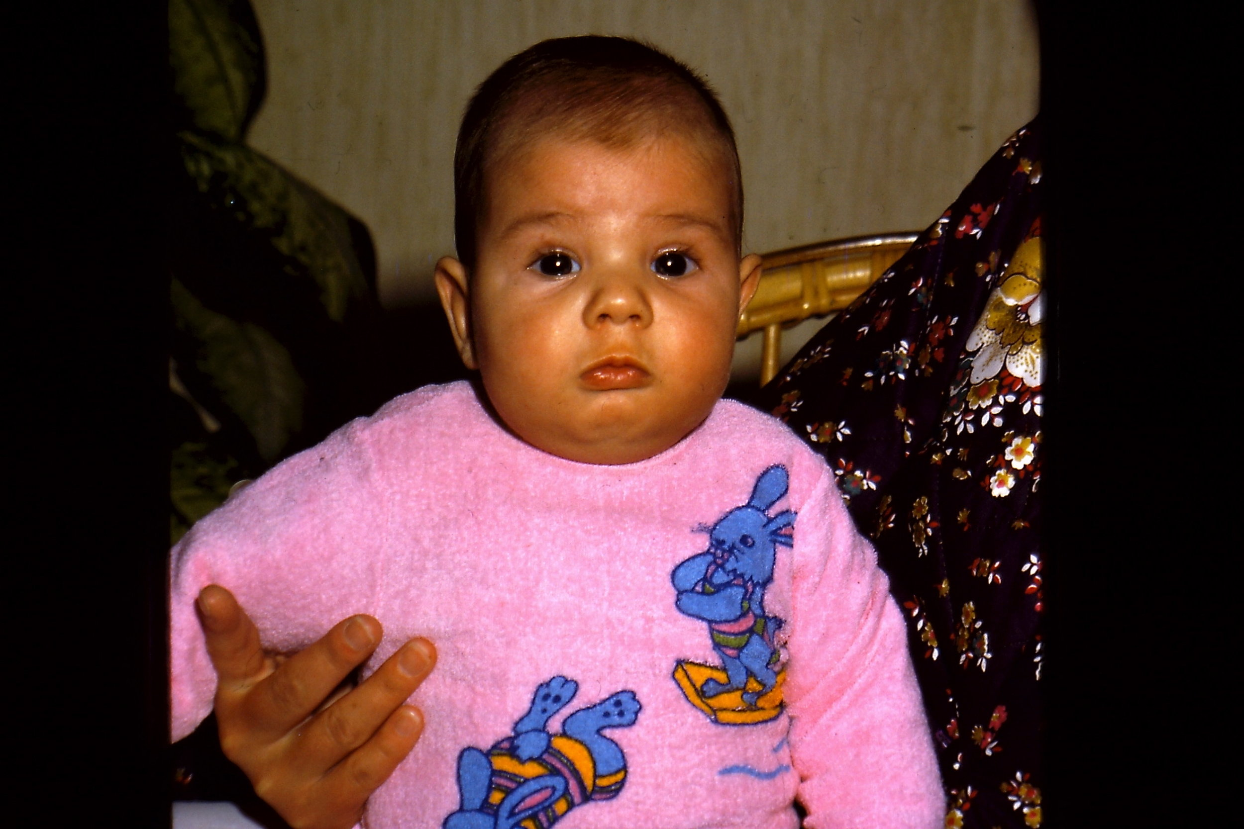 Very little Max (a few months old)   1978
