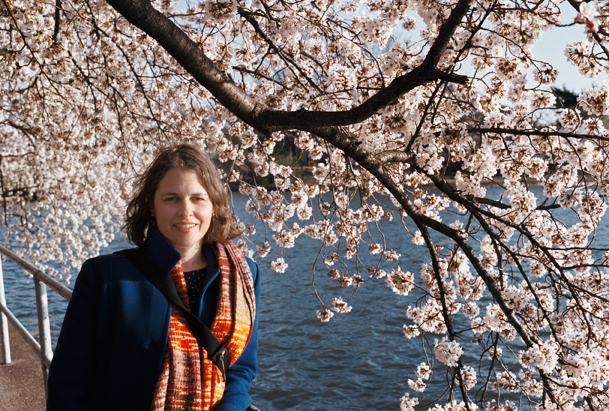 Kat and the Cherry Blossoms II  |  Frame 34