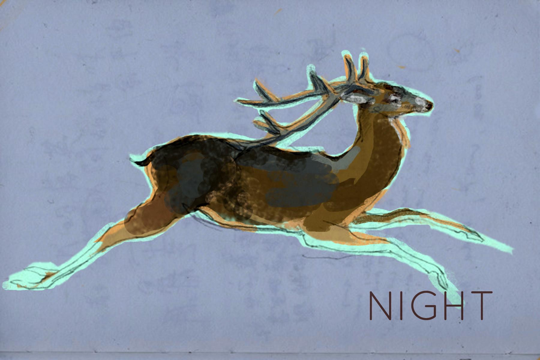 7-night-2.jpg