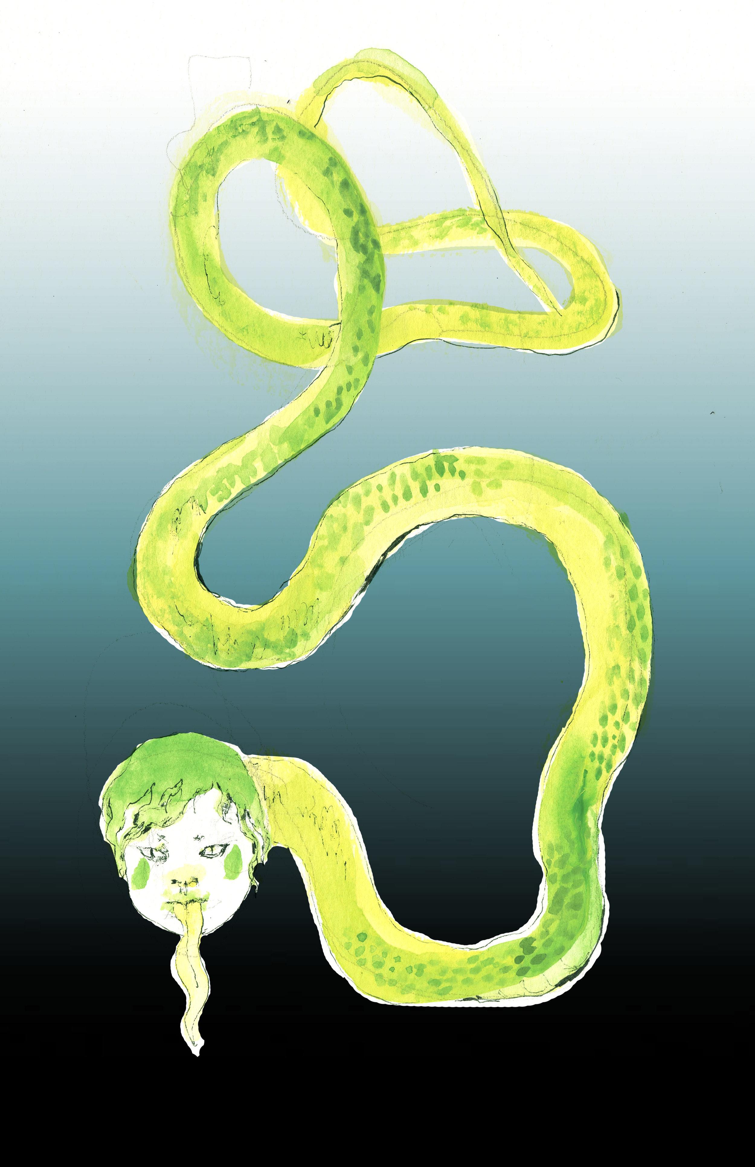 6-snake.jpg