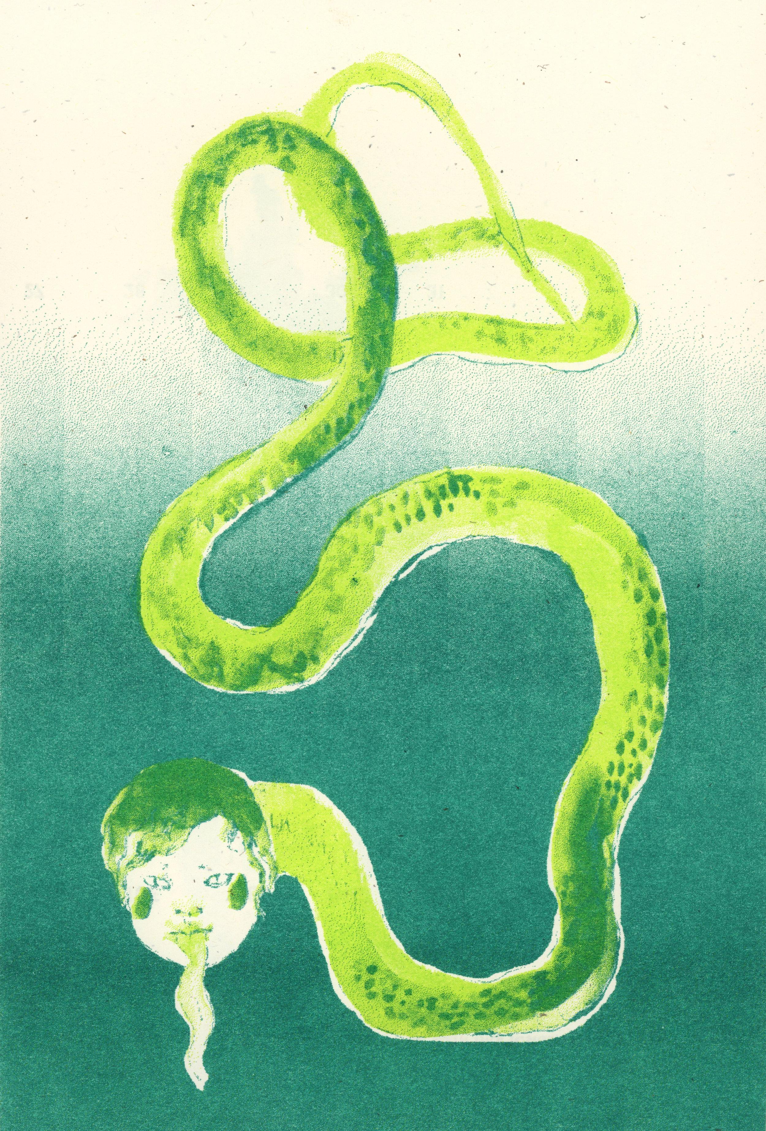 6-snake-riso.jpg