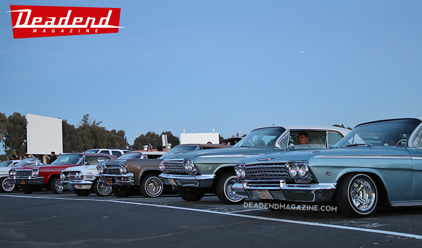 Impalas lined up ready to watch the movie.