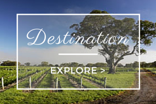 merlot-verdelho-penola-accommodation-destination.png