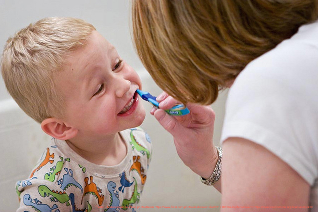 Family Dentist