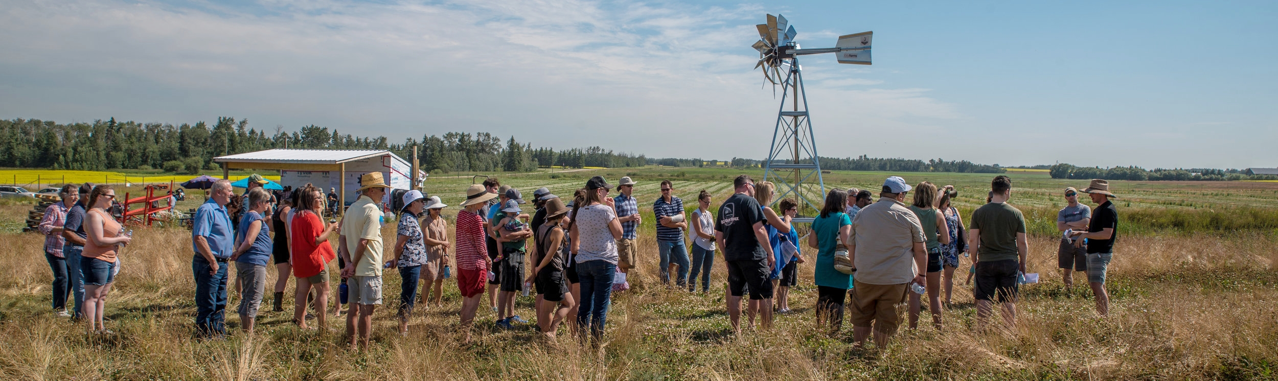 Rosy farms - haskap alberta - farm tour