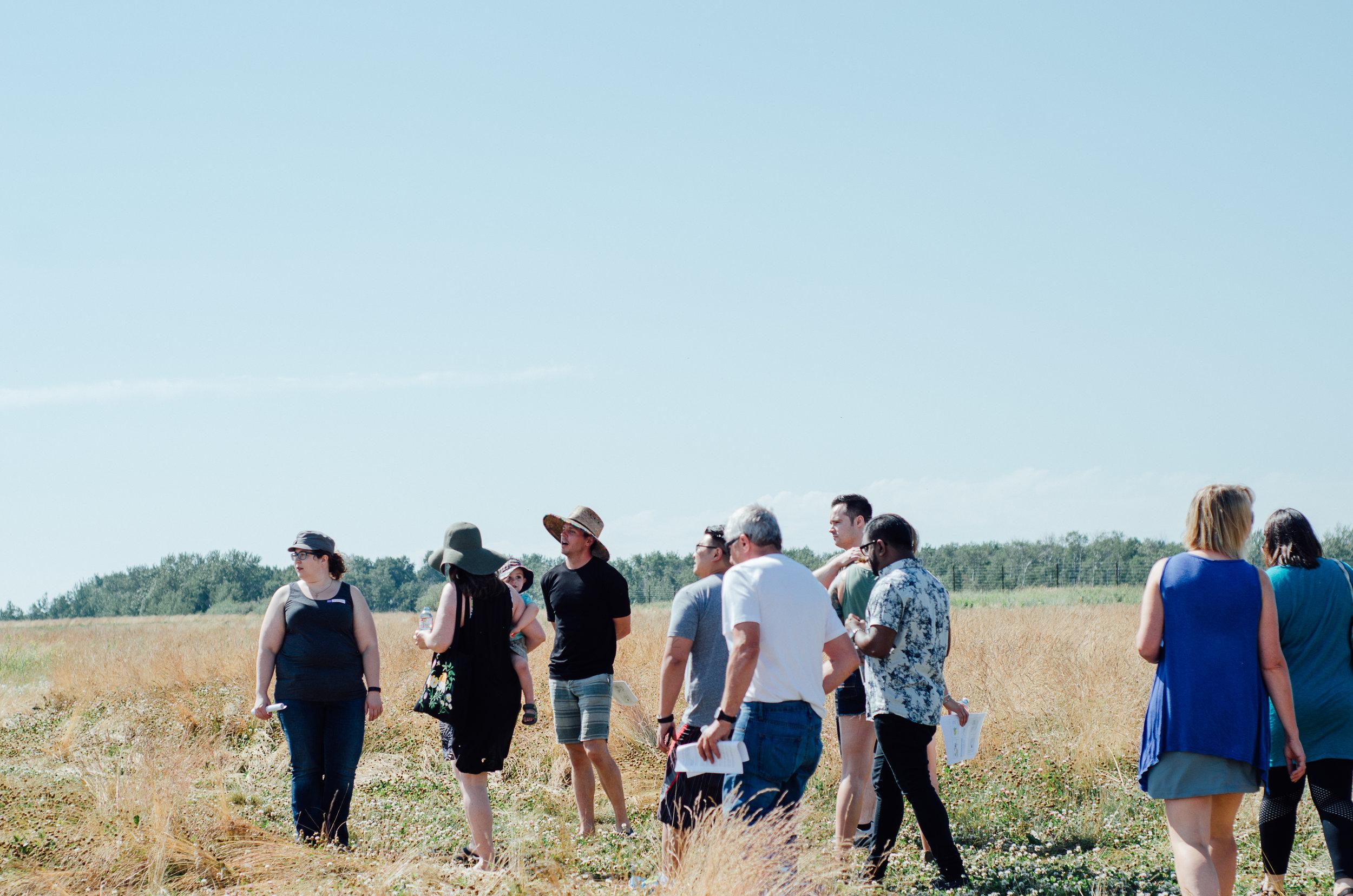 Rosy Farms - Haskap Alberta-5436.jpg