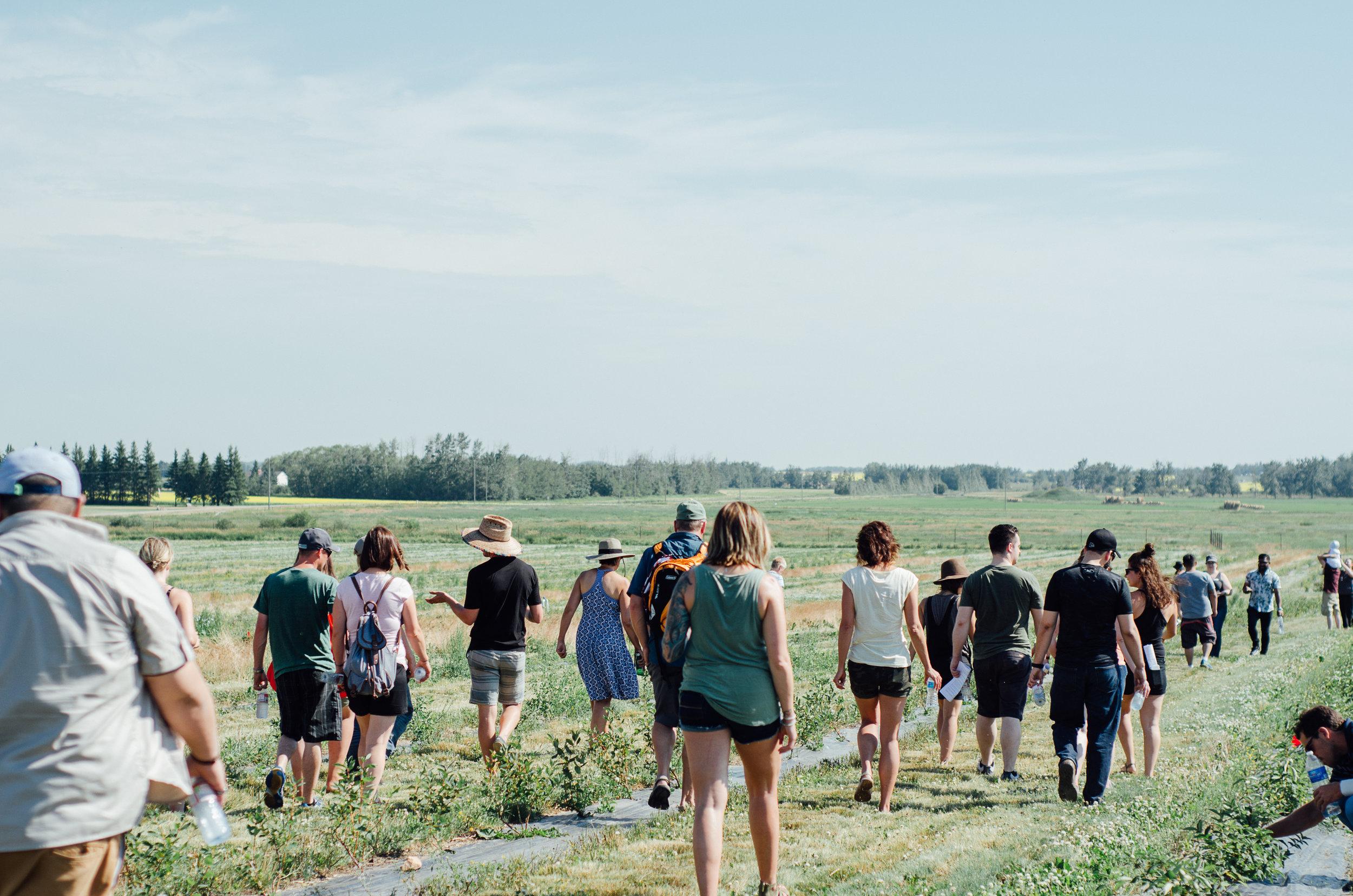 Rosy Farms - Haskap Alberta-5471.jpg
