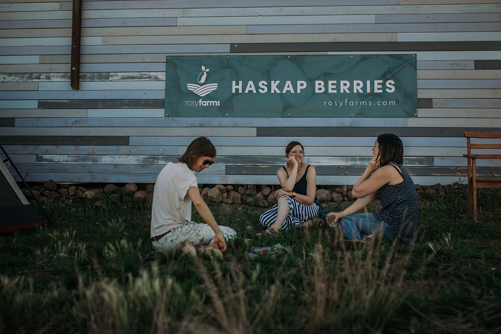 Haskap Berries